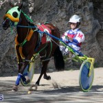 Harness Pony Racing Bermuda Feb 21 2018 2 (2)