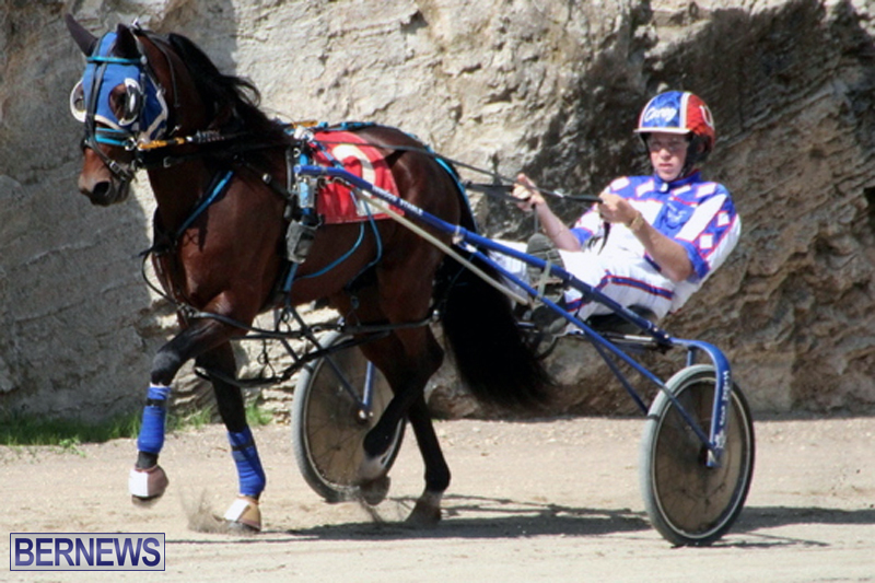 Harness-Pony-Racing-Bermuda-Feb-21-2018-2-4