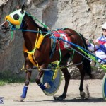 Harness Pony Racing Bermuda Feb 21 2018 2 (5)