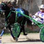 Harness Pony Racing Bermuda Feb 21 2018 2 (6)