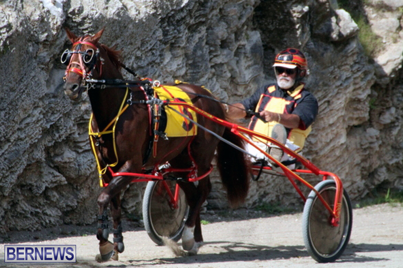 Harness-Pony-Racing-Bermuda-Feb-21-2018-2-7