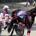 Harness Pony Racing Bermuda Feb 21 2018 2 (8)