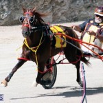 Harness Pony Racing Bermuda Feb 21 2018 2 (9)