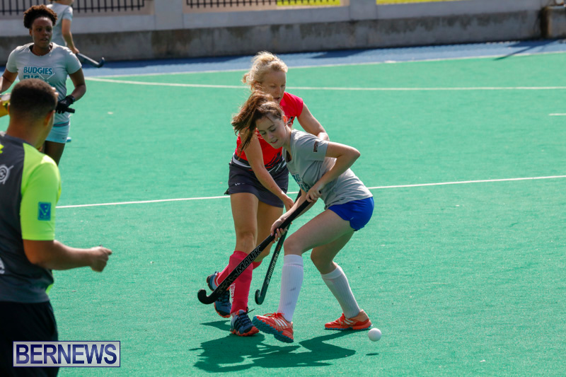 Hockey-Bermuda-February-18-2018-0738