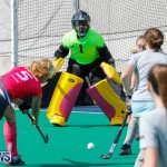 Hockey Bermuda, February 18 2018-0829