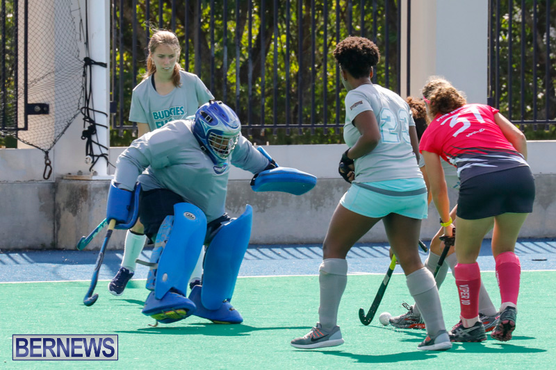Hockey-Bermuda-February-18-2018-0870