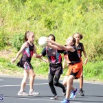 Netball Junior & Senior Bermuda Feb 10 2018 (7)