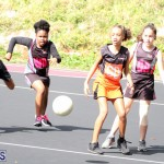 Netball Junior & Senior Bermuda Feb 10 2018 (9)