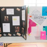 Purvis Primary Science Fair Bermuda, February 22 2018-1890