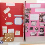 Purvis Primary Science Fair Bermuda, February 22 2018-1892