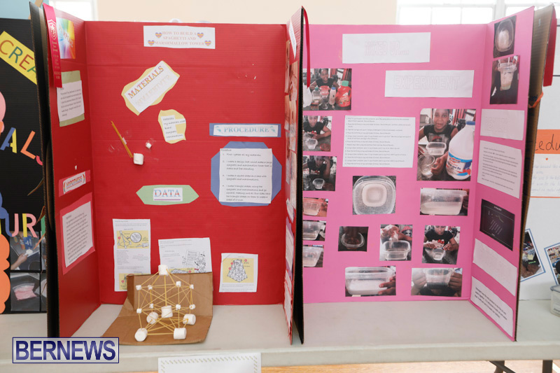Purvis-Primary-Science-Fair-Bermuda-February-22-2018-1892
