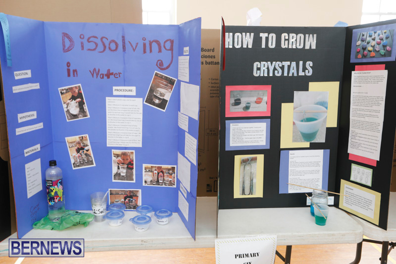 Purvis-Primary-Science-Fair-Bermuda-February-22-2018-1894