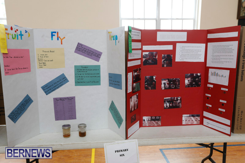 Purvis-Primary-Science-Fair-Bermuda-February-22-2018-1896