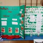 Purvis Primary Science Fair Bermuda, February 22 2018-1897