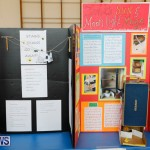 Purvis Primary Science Fair Bermuda, February 22 2018-1899