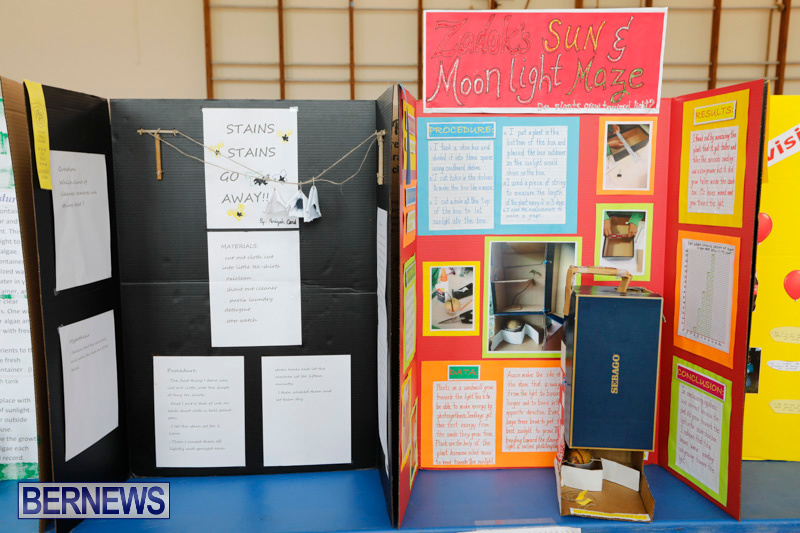 Purvis-Primary-Science-Fair-Bermuda-February-22-2018-1899