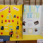 Purvis Primary Science Fair Bermuda, February 22 2018-1900