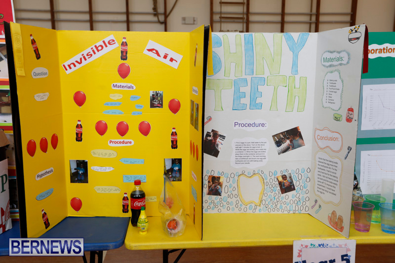 Purvis-Primary-Science-Fair-Bermuda-February-22-2018-1900