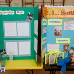 Purvis Primary Science Fair Bermuda, February 22 2018-1901