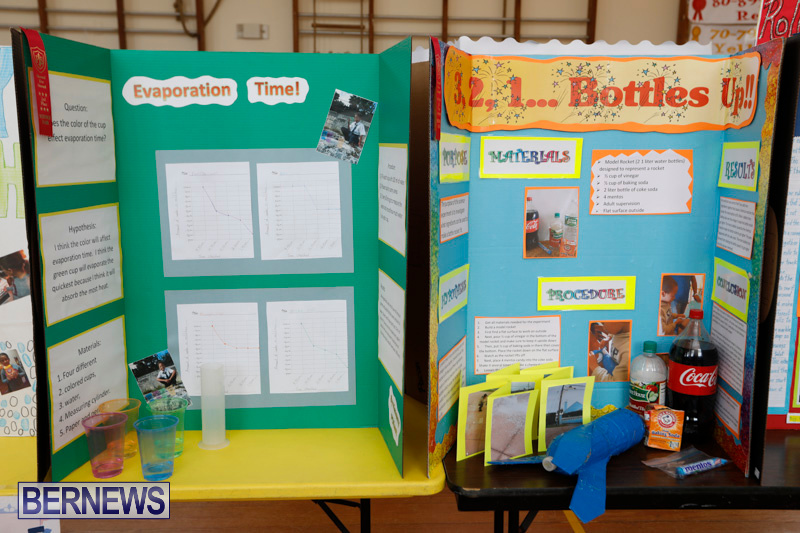 Purvis-Primary-Science-Fair-Bermuda-February-22-2018-1901