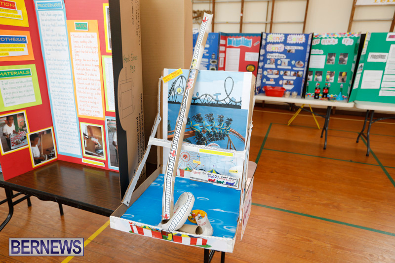Purvis-Primary-Science-Fair-Bermuda-February-22-2018-1903