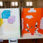 Purvis Primary Science Fair Bermuda, February 22 2018-1905