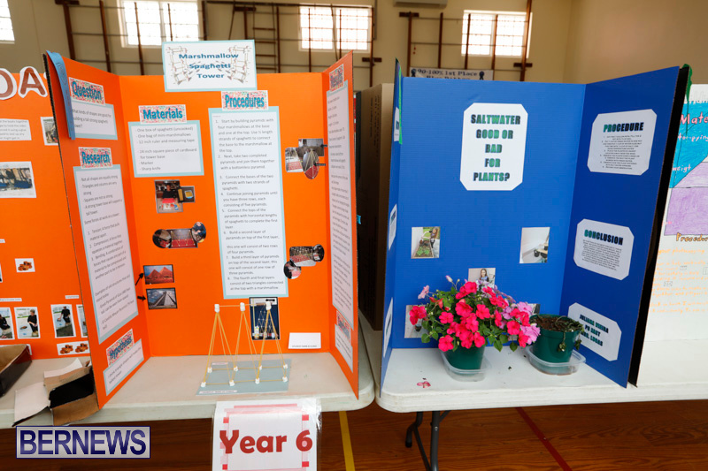 Purvis-Primary-Science-Fair-Bermuda-February-22-2018-1906