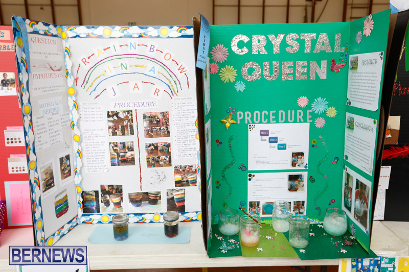 Purvis-Primary-Science-Fair-Bermuda-February-22-2018-1914