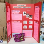 Purvis Primary Science Fair Bermuda, February 22 2018-1916