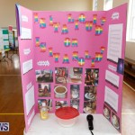 Purvis Primary Science Fair Bermuda, February 22 2018-1919