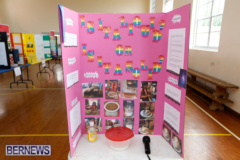 Purvis-Primary-Science-Fair-Bermuda-February-22-2018-1919