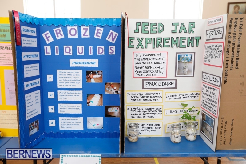 Purvis-Primary-Science-Fair-Bermuda-February-22-2018-1923