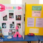 Purvis Primary Science Fair Bermuda, February 22 2018-1925