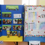 Purvis Primary Science Fair Bermuda, February 22 2018-1927