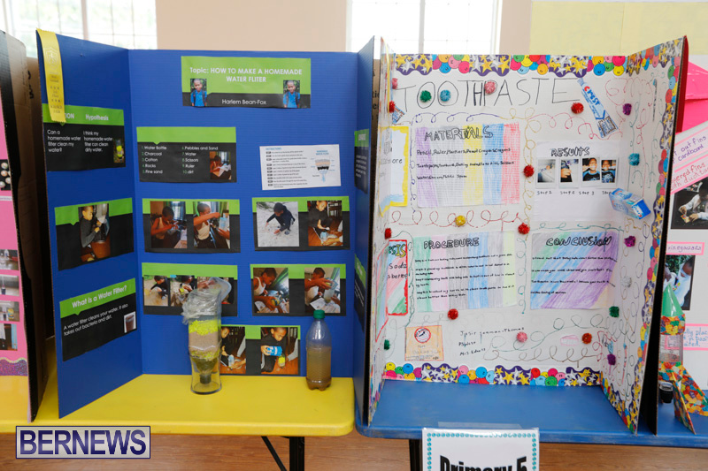 Purvis-Primary-Science-Fair-Bermuda-February-22-2018-1927