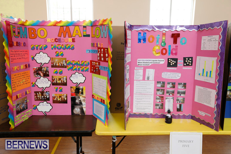 Purvis-Primary-Science-Fair-Bermuda-February-22-2018-1929