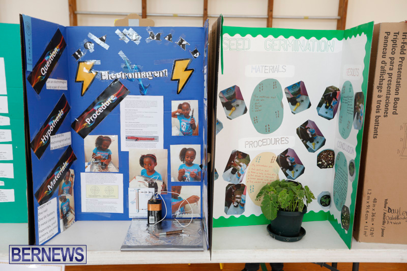 Purvis-Primary-Science-Fair-Bermuda-February-22-2018-1931