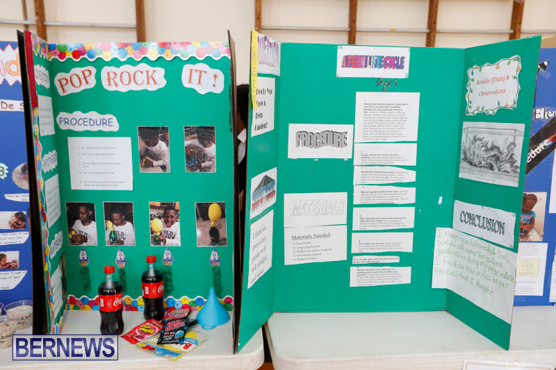 Purvis-Primary-Science-Fair-Bermuda-February-22-2018-1932