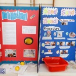 Purvis Primary Science Fair Bermuda, February 22 2018-1933