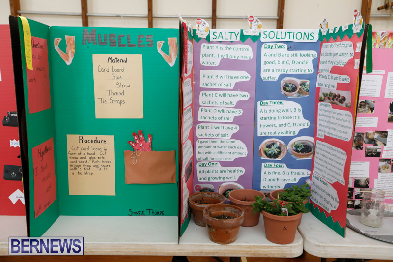Purvis-Primary-Science-Fair-Bermuda-February-22-2018-1938