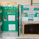 Purvis Primary Science Fair Bermuda, February 22 2018-1941