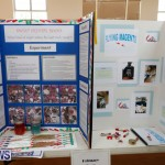 Purvis Primary Science Fair Bermuda, February 22 2018-1962