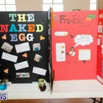 Purvis Primary Science Fair Bermuda, February 22 2018-1966