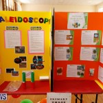 Purvis Primary Science Fair Bermuda, February 22 2018-1973