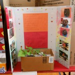 Purvis Primary Science Fair Bermuda, February 22 2018-1976