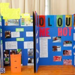 Purvis Primary Science Fair Bermuda, February 22 2018-1980