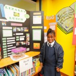 Purvis Primary Science Fair Bermuda, February 22 2018-1992