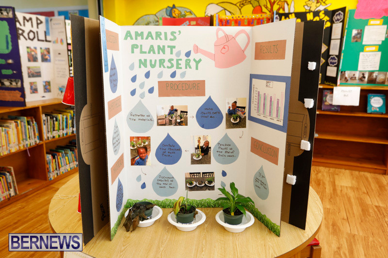 Purvis-Primary-Science-Fair-Bermuda-February-22-2018-2014