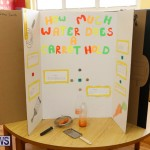 Purvis Primary Science Fair Bermuda, February 22 2018-2016