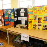 Purvis Primary Science Fair Bermuda, February 22 2018-2017